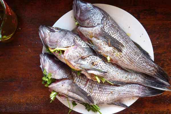 The all day dinner cooking and recipes for Sea salt fish grill