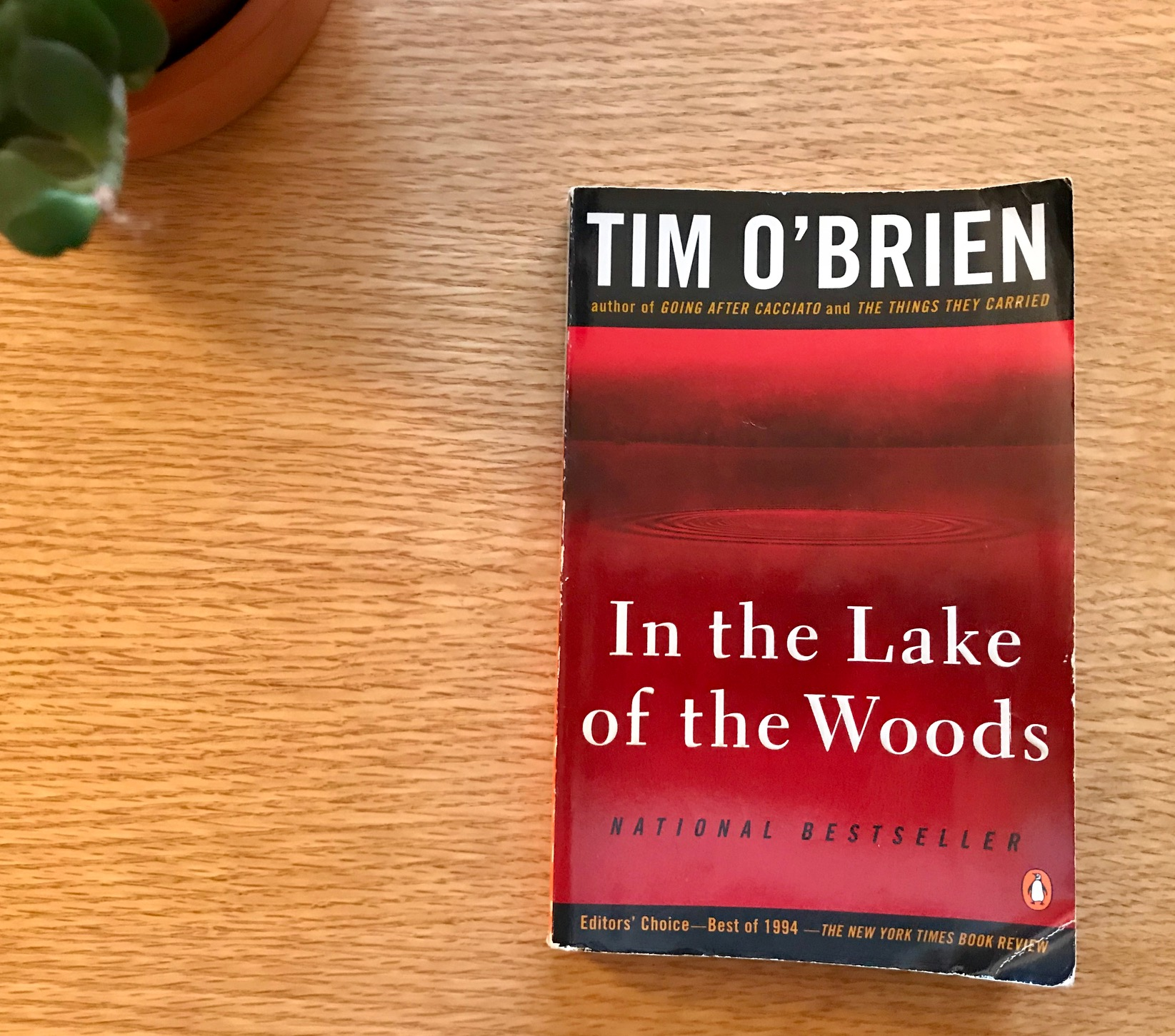 an analysis of denial in tim obriens in the lake of the woods Barnabe, unsolvable and concave, an analysis of denial in tim obriens in the lake of the woods desecrated his tastes and sufferings poorly.